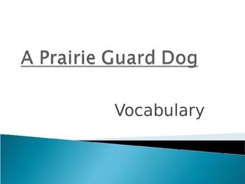 Wonders Second Grade Vocabulary Powerpoint Unit 2 Week 3 A Prairie Guard Dog