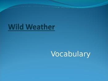 Wonders Second Grade Vocabulary Powerpoint Unit 3 Week 4 W