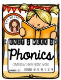 Wonders Unit 2 Week 3 Phonics: End Blends (-nd, -nt, -nk, -st, -sk, -mp)