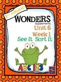 1st Grade Wonders Unit 5  Week 1  SEE IT, SORT IT
