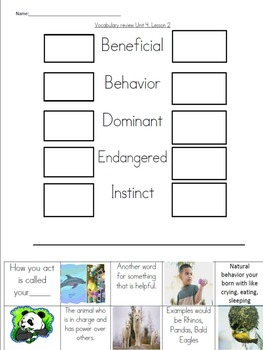 Wonders Vocabulary Unit 4, Week 2 Set