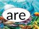 Wonders kindergarten high frequency words 2nd 9 weeks