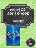 Wonderstruck Mentor Sentences