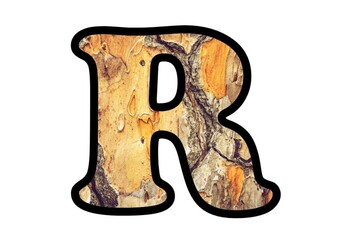 Wood, Tree Bark Theme Letters, Numbers and Symbols, Fall Classroom Decor