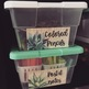 Wood and Succulent Classroom Decor and Growth Mindset Quotes