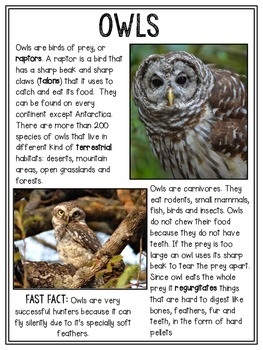 Woodland Animal Non-fiction Close Reading Passages (FREEBIE)