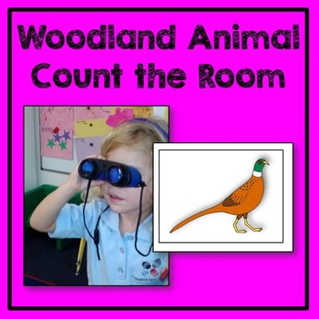 Woodland Animal Count the Room Math Center