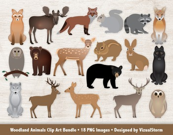 Woodland Animals Clip Art Bundle, 18 Hand Drawn Forrest Animal Illustrations