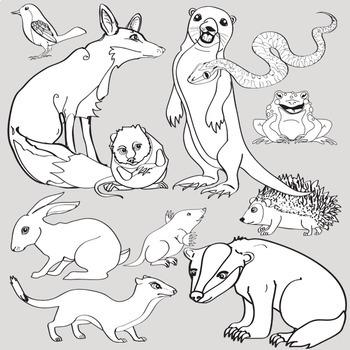 Woodland Animals Clip Art - Forest Animals 22 Piece Set