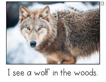 Woodland Animals Emergent Reader