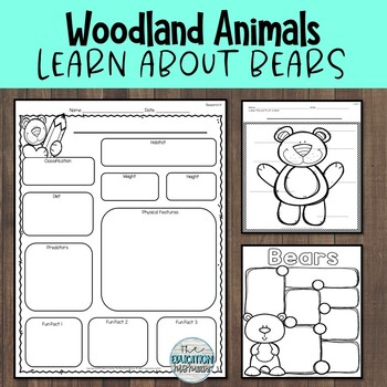Woodland Animals | I can Learn about Bears
