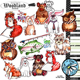Woodland Animals - Outdoors