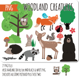 Woodland Animals PNG Clipart, PNG clip art of fox, deer, bear, raccoon, bird