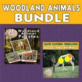 Woodland Animals Printable Puzzles & Math Blocks Pattern T