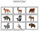 """Woodland Animals Real Photo """"I See"""" Book for Special Education Classrooms"""