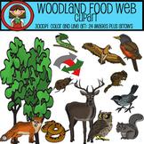 Woodland Food Web Clip Art Set - 24 images plus arrows for ECOLOGY lessons