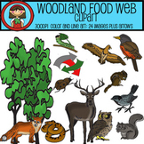 Woodland Food Web Clip Art Set - 24 images plus arrows for ECOLOGY lessons
