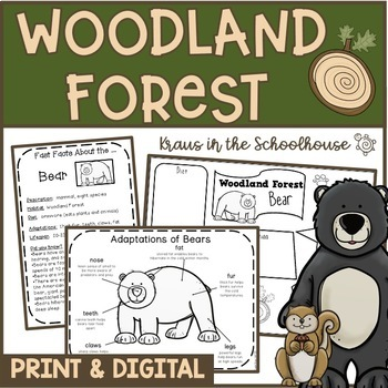 Woodland Forest Research Activities and Graphic Organizers