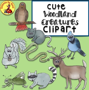 Whimsical Woodland Forest Creatures Clipart for Personal or Commercial Use