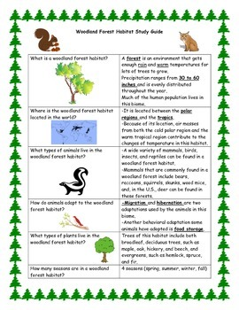 Woodland Forest Habitat Study Guide