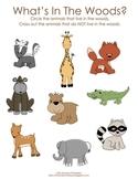 Woodland Friends preschool activities (wildlife, forest)