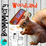 Woodland - Lapbook, STEAM, Biomimicry Flash Freebie
