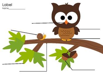 Woodland Math & Writing Practice