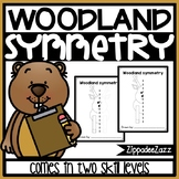 Woodland Symmetry Drawing Activity for Art and Math