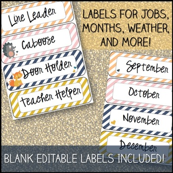 Woodland Theme Classroom Decor Pack with Editables