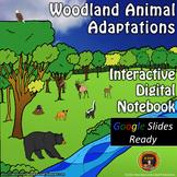 Woodland Animal Adaptations Interactive Digital Notebook for Google Drive®