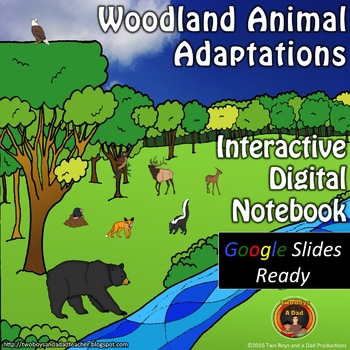 Woodland Animal Adaptations Interactive Digital Notebook f