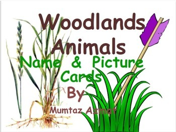 Woodlands Animal Name & Picture Cards: