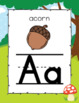 Woodlands Themed Alphabet Posters- Classroom Decor