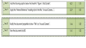 Word 2013 Review/MOS Exam Review:  Unusual Careers Rob Dyrdek