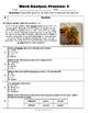 Word Analysis QR Code Practice Sheet 4 - SOL 4.4
