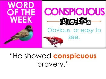 Word Birds Word of the Week 8th Grade High-Level Vocabulary Builder: 40 Lessons!