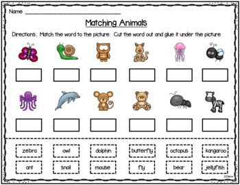 Word Cards - Animals and Pictures