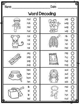 Word Decoding Assessment or Practice Worksheets