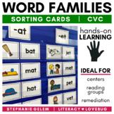 Word Families CVC Short Vowels Sorts