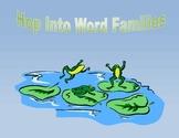 Word Families-File Folders-Reading-Phonics-Autism