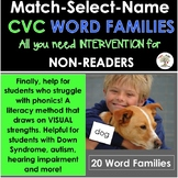 Word Families Intervention (CVC) MATCH-SELECT-NAME (Down Syndrome, special ed.)