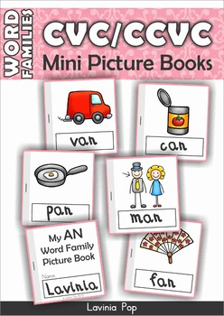FREE Word Family Booklet (CVC & CCVC words)