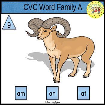 CVC Word Family Clip Cards