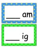 Word Families /-am/ and /-ig/...Building Words Center and Word Work