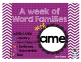 Word Family - ame family