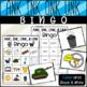 Word Family Bingo Bundle