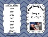 Word Family Books - Long Vowels **BUNDLE**