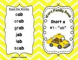 Word Family Books - Short Vowels **BUNDLE**