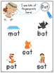 Word Family Books and Games,  20 Book Bundle (Pre-Reader Series)