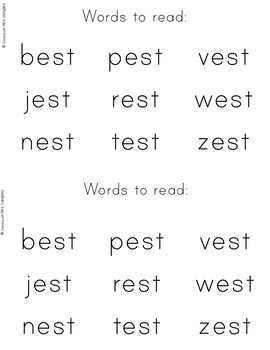 Word Family Books: The Best Vest